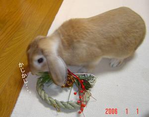 2006010102.jpg