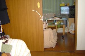 2006021001.jpg