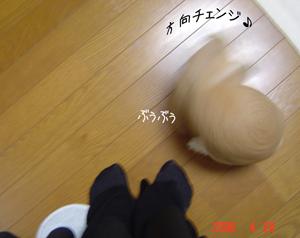 2006042204.jpg
