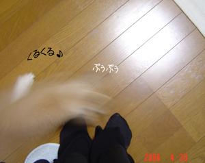 2006042207.jpg