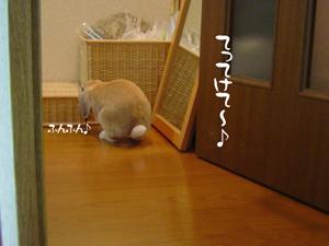 2006053001.jpg