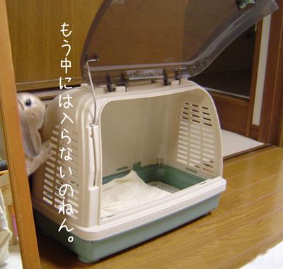 2006062503.jpg