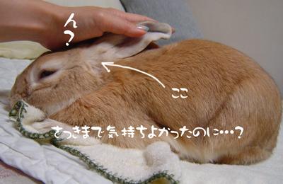 2006070402.jpg